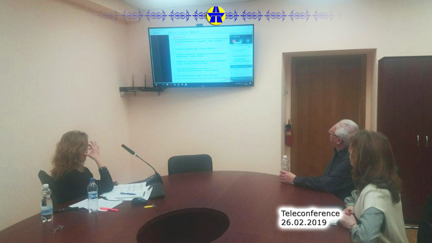 Teleconference on the development of the project idea